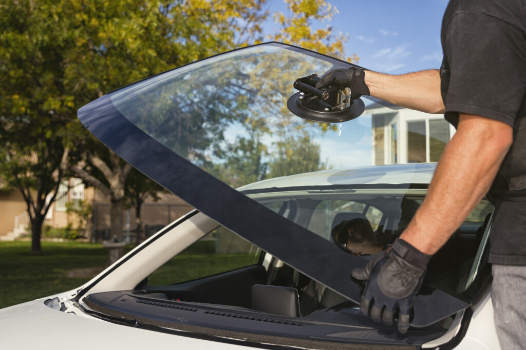 AUTO GLASS REPLACEMENT COMPANY, WELL ESTABLISHED